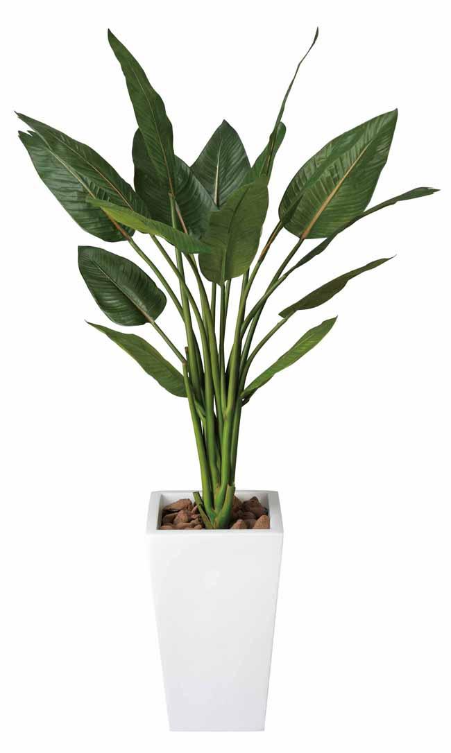 アートグリーン 人工観葉植物 光触媒 光の楽園 ストレチアW1.3(代引き不可)【送料無料】【int_d11】