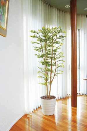 アートグリーン 人工観葉植物 光触媒 光の楽園 ゴールデンリーフ1.8(代引き不可)【送料無料】
