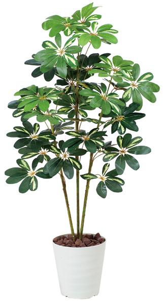 アートグリーン 人工観葉植物 光触媒 光の楽園 カポック斑入り1.2(代引き不可)【送料無料】
