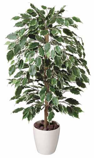 アートグリーン 人工観葉植物 光触媒 光の楽園 ゴールデンフィカス1(代引き不可)【送料無料】