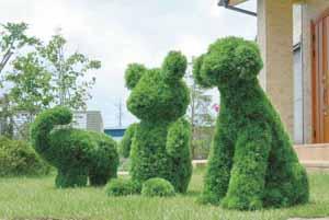 アートグリーン 人工観葉植物 光触媒 光の楽園 イヌ(代引き不可)【送料無料】【int_d11】