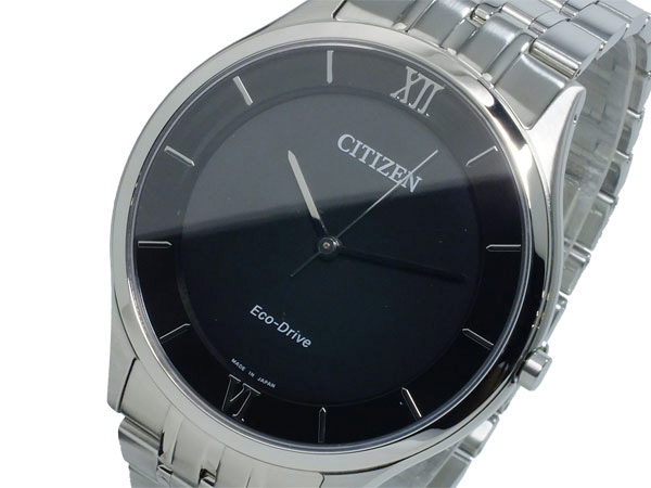 シチズン CITIZEN エコドライブ メンズ 腕時計 AR0070-51E【送料無料】【ポイント10倍】