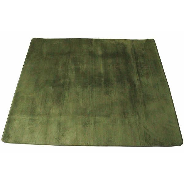 マイクロファイバーラグ 185×240 グリーン 室内繊維 マット カ-ペット センタ-ラグ PG-012(代引不可)【送料無料】