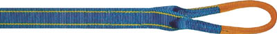 シライ シグナルスリングHG 両端アイ形 幅50mm 長サ5.0m SG4E505