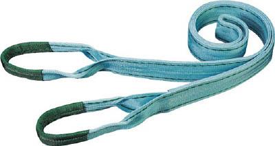 田村 ベルトスリング Pタイプ 3E 100×4.0【PE1000400】(吊りクランプ・スリング・荷締機・ベルトスリング)