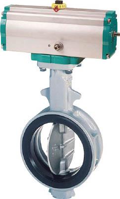 新しいコレクション 巴 JIS10K FC450/SCS14/NBR 700G−7E 65A【700G-7E-65-S-N】(管工機材・バルブ)【送料無料】:リコメン堂-DIY・工具