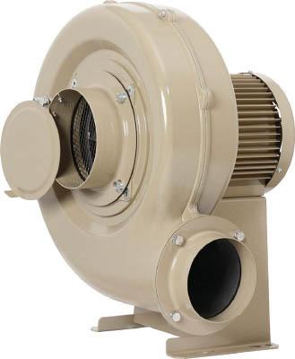 昭和 電動送風機 コンパクトシリーズ(0.4kW)【EC-04S】(環境改善機器 電動送風機 昭和・送風機)(代引不可), sunlifestore:3ef68348 --- sunward.msk.ru