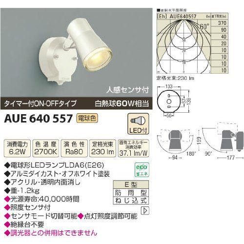 コイズミ アウトドアスポットライト AUE640557 【設置工事不可】