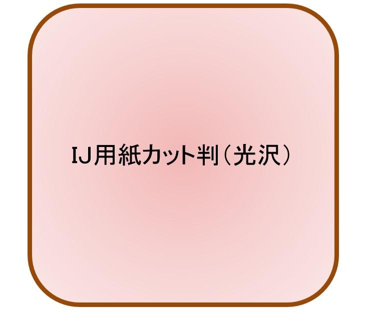インクジェット用光沢紙 厚口 B5 230μ(800枚パック 1枚あたり23.1円)(代引不可)【送料無料】