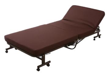 アイリスオーヤマ 折りたたみベッド ベッド OTB-TRN(代引き不可)【送料無料】