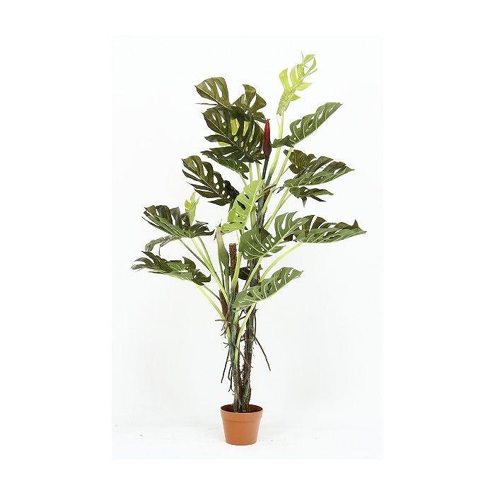 観葉植物 スプリット W800×D800×H1400mm ポリスチレン樹脂 ワイヤー 木材 おしゃれ(代引不可)【送料無料】