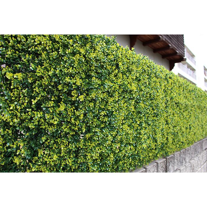 40%OFFの激安セール 送料無料 メイルオーダー リアルグリーンフェンス 1m×1m ボックスウッド グリーンカーテン 緑のカーテン ベランダ テラス 外壁 日差し 装飾 代引不可 視線 フェイクグリーン 日よけ カット おしゃれ 観葉植物 S1