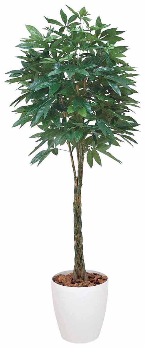 アートグリーン 人工観葉植物 光触媒 光の楽園 パキラ1.6(代引き不可)【送料無料】