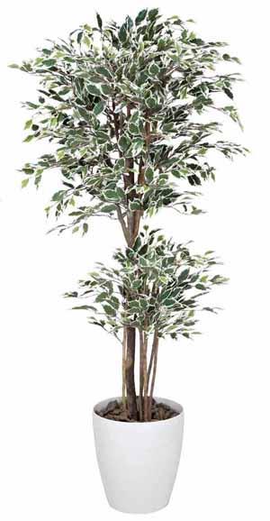 アートグリーン 人工観葉植物 光触媒 光の楽園 トロピカルベンジャミン斑入り1.6(代引き不可)【送料無料】
