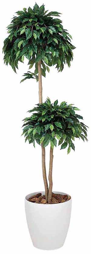 アートグリーン 人工観葉植物 光触媒 光の楽園 ベンジャミンダブル1.8(代引き不可)【送料無料】