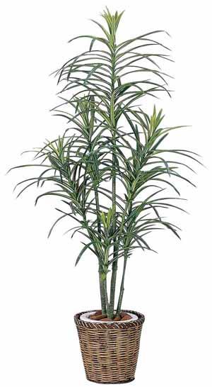 アートグリーン 人工観葉植物 光触媒 光の楽園 ドラセナコンシンネ1.3(代引き不可)【送料無料】