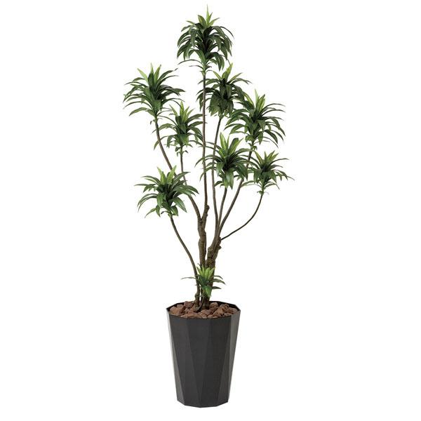 アートフラワー 人工観葉植物 光触媒 光の楽園 ドラセナコンパクタ1.6 (代引き不可)【送料無料】