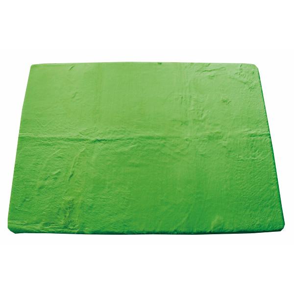 ラビットファー風マイクロファイバーラグ(185×240) グリーン 室内繊維 マット カ-ペット センタ-ラグ PG031(代引不可)【送料無料】