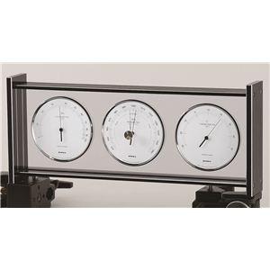 スーパーEXギャラリー気象計 EX-796