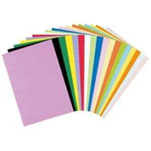 (業務用10セット) リンテック 色画用紙/工作用紙 【四つ切り 100枚×10セット】 薄青 NC216-4