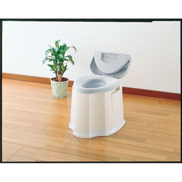 アロン化成 樹脂製ポータブルトイレ ポータブルトイレ GX 533-093