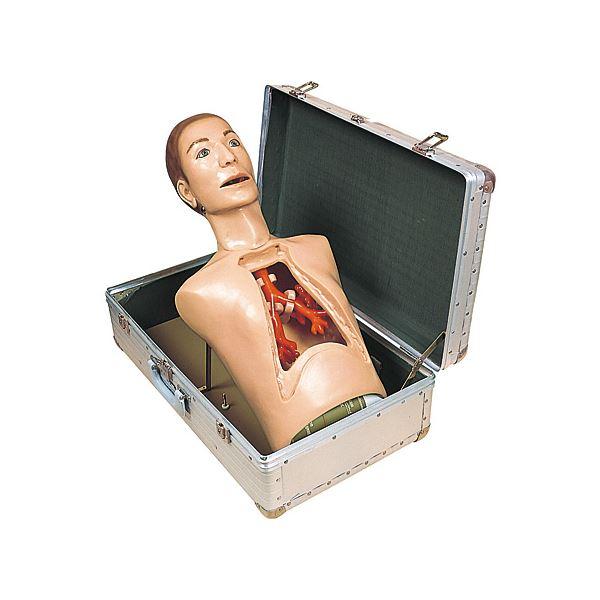 気管支内視鏡練習モデル(看護実習モデル人形) 専用ケース付き M-136-0【代引不可】