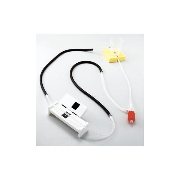 血圧測定原理学習用シミュレーター/看護実習モデル 「けつあつくん」 軽量・コンパクト M-154-0【代引不可】