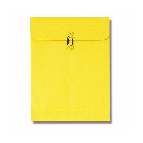 (まとめ) ピース マチ・ヒモ付保存袋 カーデックス角0 164g 133-30 1パック(10枚) 【×10セット】