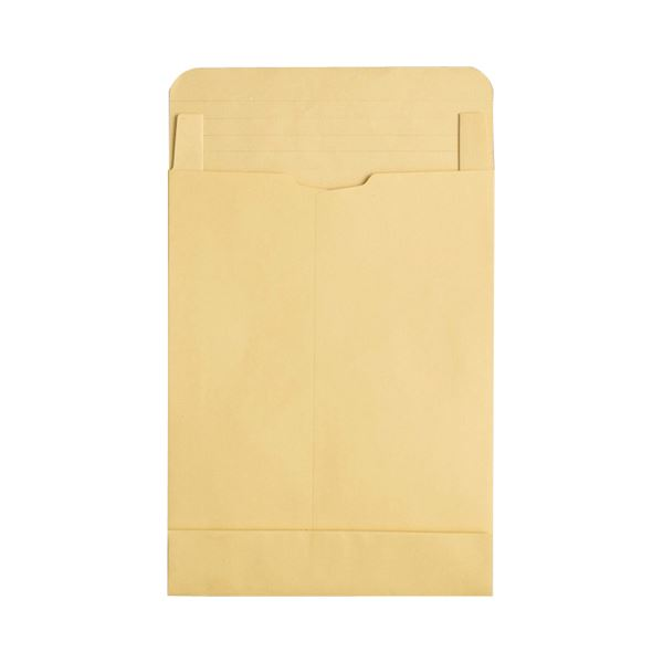 ノート ふせん 紙製品 封筒 大型封筒 A3以上 マチ付角2以上 まとめ TANOSEE m2 50枚 幅広 ×5セット ※アウトレット品 贈与 1パック 120g 角0 マチ付クラフト大型封筒