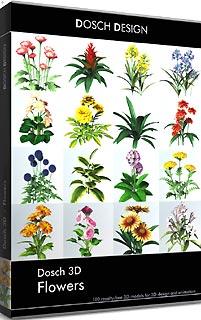 正規品販売! DOSCH DESIGN 3D: DOSCH 3D: D3D-FL(き) Flowers DOSCH D3D-FL(き), 高津区:49f0fae0 --- kventurepartners.sakura.ne.jp