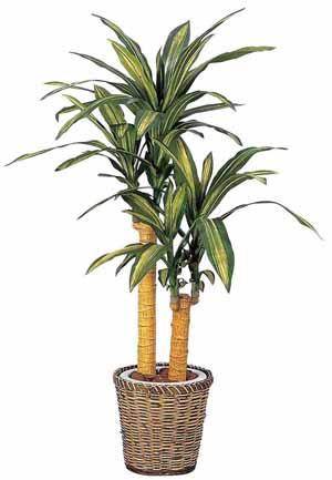 アートグリーン 人工観葉植物 光触媒 光の楽園 幸福の木1.1(代引き不可)【送料無料】