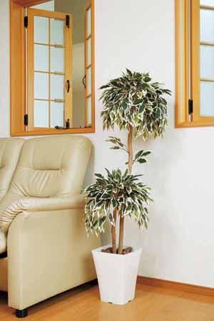 アートグリーン 人工観葉植物 光触媒 光の楽園 斑入りベンジャミンダブル1.2(代引き不可)【送料無料】