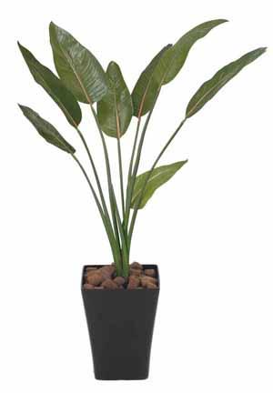 アートグリーン 人工観葉植物 光触媒 光の楽園 ストレチア1.2(代引き不可)【送料無料】