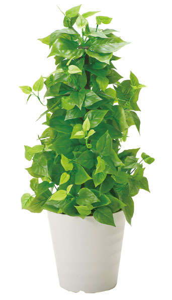 アートグリーン 人工観葉植物 光触媒 光の楽園 ポールライムポトス(代引き不可)【送料無料】