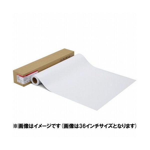 キヤノン 写真用紙・光沢 プロ[プラチナグレード] LFM-GPPT 42 300[1107C001](代引不可)