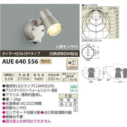 コイズミ アウトドアスポットライト AUE640556 【設置工事不可】