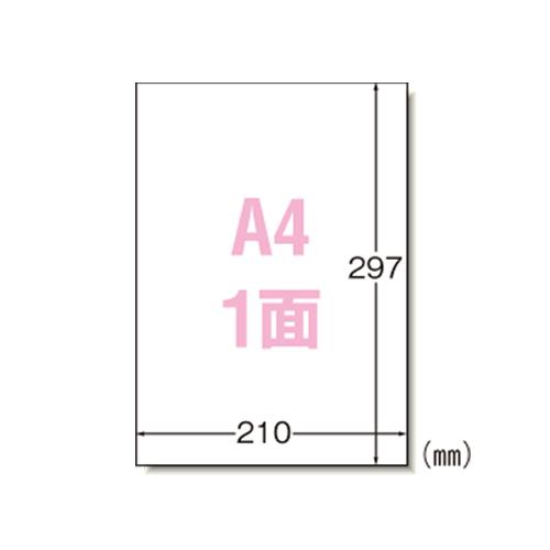 エーワン マルチプリンタラベル ノーカット 1000シート入 1 箱 31151 文房具 オフィス 用品【S1】