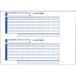 オービックビジネスコンサルタント 奉行シリーズ用専用 単票給与明細書 6101