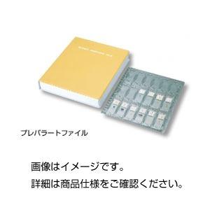 (まとめ)プレパラートファイルPT【×3セット】
