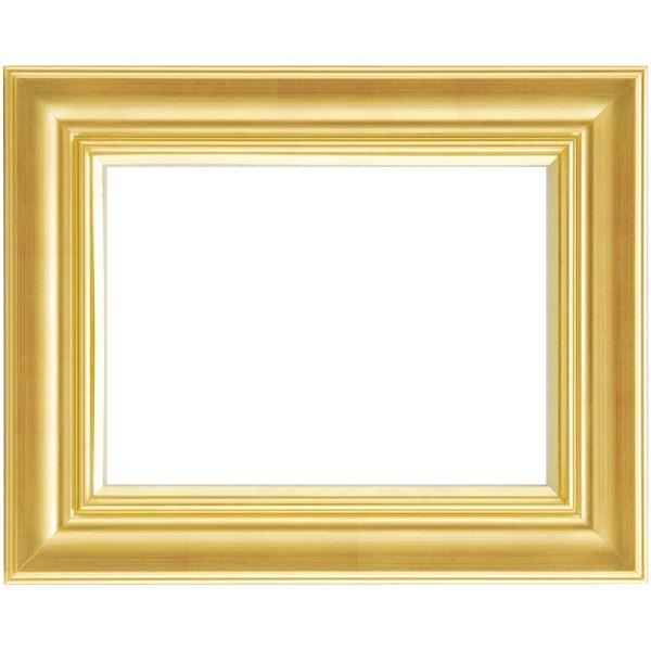 軽量 油絵額物/油額 【F4 ゴールド】 縦40cm×横49.8cm×高さ6.1cm 表面カバー:アクリル 『まじかるフレーム』