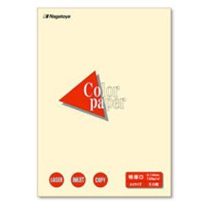 (業務用100セット) Nagatoya カラーペーパー/コピー用紙 【A4/特厚口 50枚】 両面印刷対応 レモン ×100セット