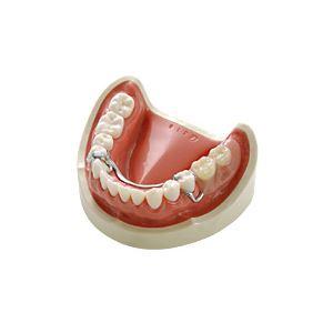 義歯デモンストレーションモデル/看護実習モデル 【下顎】 実物大 M-173-2【代引不可】