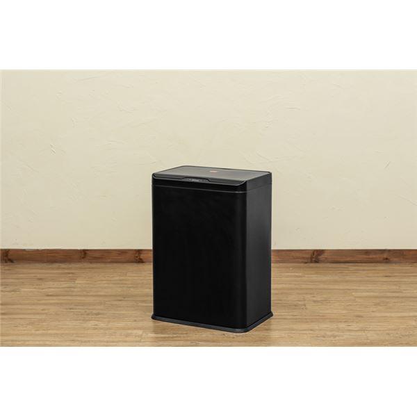センサー自動開閉式 2分別 ダストボックス 50L ブラック (BK)【代引不可】
