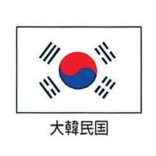 上西産業 エクスラン万国旗 70×105cm 大韓民国 YJN6901