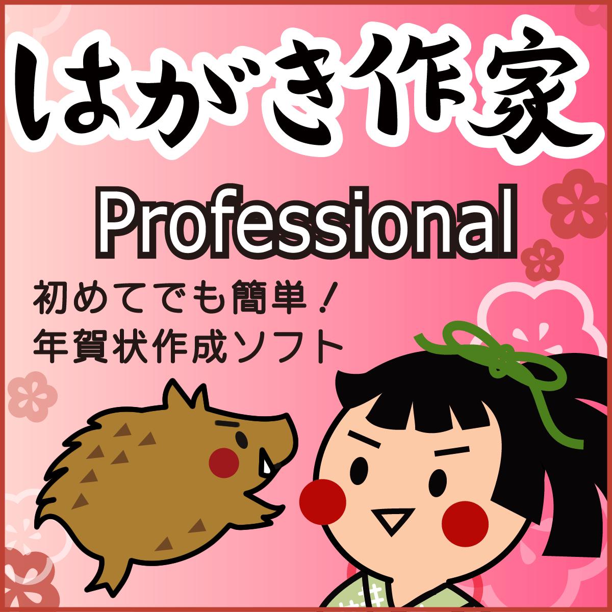 はがき作家 12 Professional (2019 亥年賀状テンプレートフォント付き)