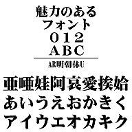 AR明朝体U Windows版TrueTypeフォント