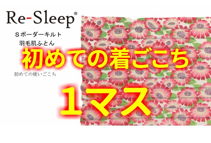 サンモト Re-Sleepリスリープ Sボーダーキルト 羽毛肌ふとんココ イングランド産ダック90% 0.3kg ピンク系 ブルー系 150×210cm 羽毛ふとん 軽量羽毛布団 工場直送 日本製