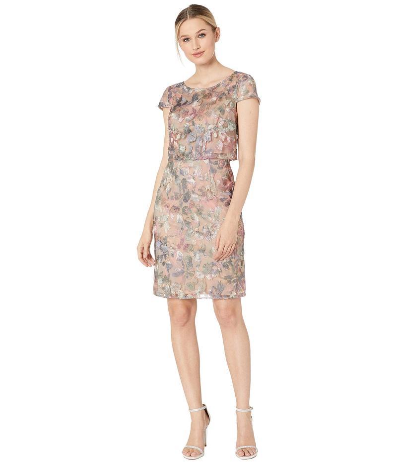アドリアナ パペル レディース ワンピース トップス Metallic Embroidered Popover Dress Pink/Blue Multi