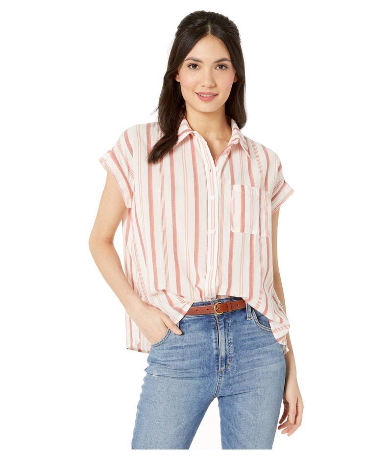 サンクチュアリー レディース シャツ トップス Mod Short Sleeve Boyfriend Shirt Painted Pottery Stripe