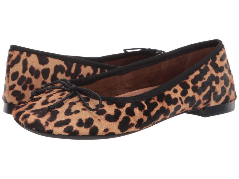 エアロソールズ レディース サンダル シューズ Martha Stewart Homerun Leopard/Tan